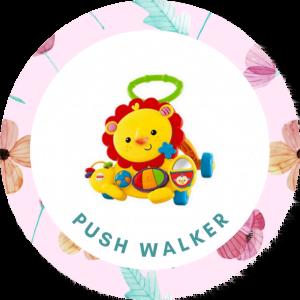 Push Walker